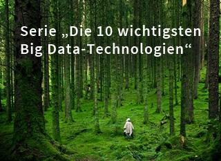 Die wichtigsten zehn Big Data-Technologien