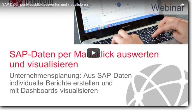 """Videostandbild """"SAP-Daten per Mausklick auswerten"""""""